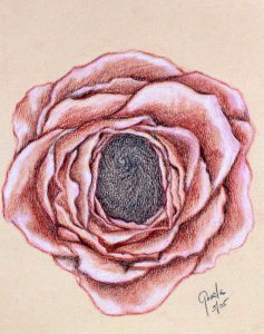 crowning-rose-baby-seminaire-237x300-237x300